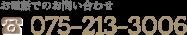 075-213-3006